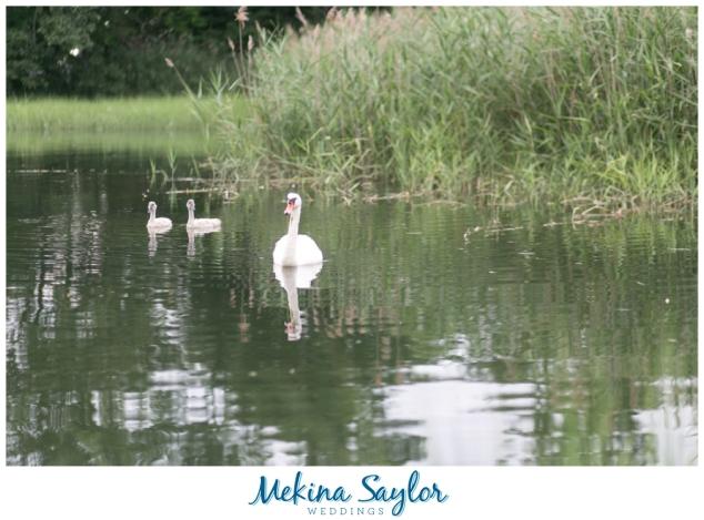 Avalon Park & Preserve Engagement-12